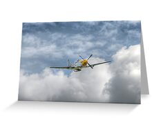 P51 Mustang - Cadillac of the Sky Greeting Card