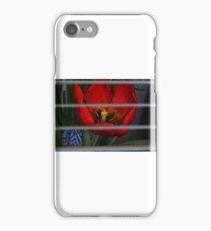 Flower through the glass iPhone Case/Skin