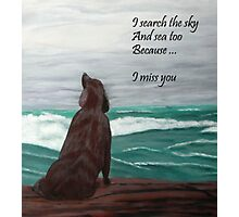 I Miss You  Photographic Print