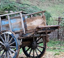 old wooden cart by spetenfia