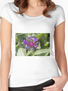 flower in spring Women's Fitted Scoop T-Shirt