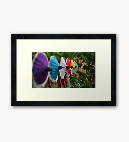 Umbrella Garden Framed Print