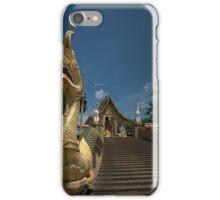 Dragon Temple iPhone Case/Skin