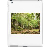 Beng Mealea Temple iPad Case/Skin
