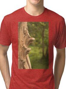 Beng Mealea Temple Snakes Tri-blend T-Shirt