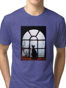 Winter Musing Tri-blend T-Shirt
