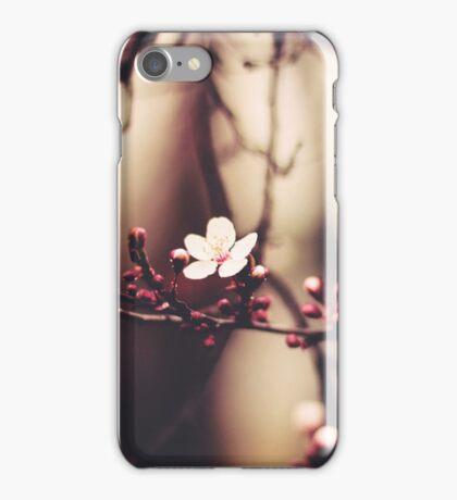 Lone Cherry Blossom  iPhone Case/Skin