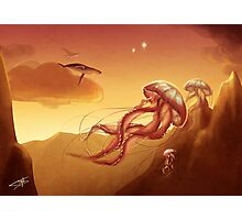 Flight of jellyfishes Photographic Print
