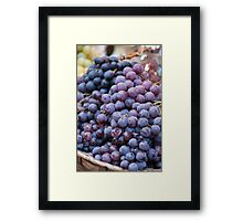 black grape Framed Print