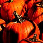 Pumpkins in the Moonlight's Shadows... by Poete100