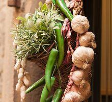 garlic by spetenfia