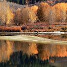 Teton Water Colours. by Ann  Van Breemen