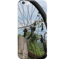 old bicycle in the meadow iPhone Case/Skin
