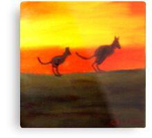 Roos @ Sunset, Australia.  Metal Print