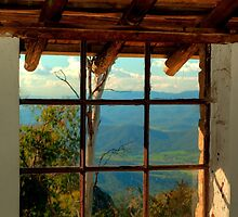 Through the Window by DavidsArt