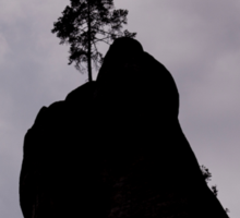 Lonely Tree on the Rock - Nature Photography Sticker