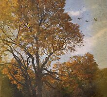 Tree In Fall by Kenneth Hoffman
