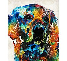 Colorful Dog Art - Heart And Soul - By Sharon Cummings Photographic Print