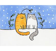 Christmas Cats and a Mistletoe Hat Photographic Print