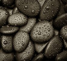 River Rocks With Rain drops by jpulley