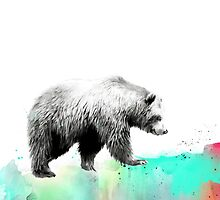 Wild No.1 // Bear by Amy Hamilton