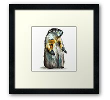 Winter Woodchuck Framed Print