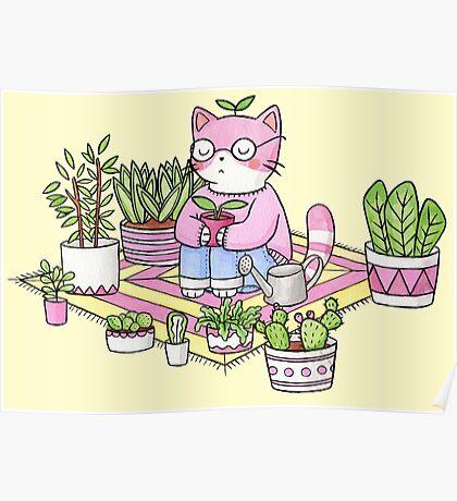 Cacti Meditation Poster