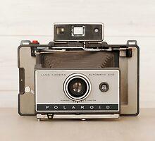 Vintage Polaroid Land Camera by Flo Smith
