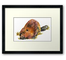 Pudge the Beaver Framed Print