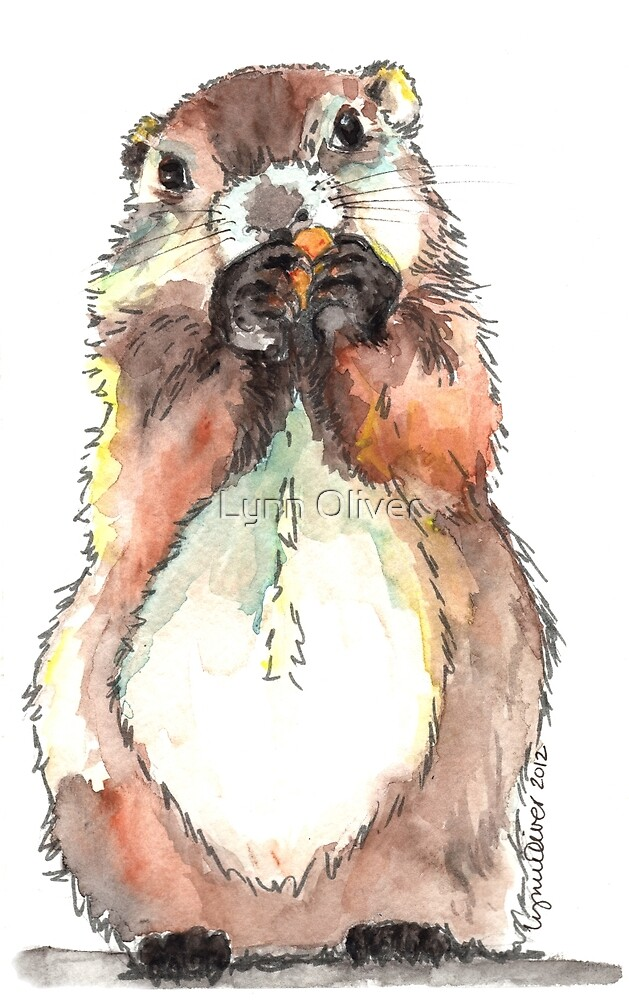 Dinky the Groundhog by Lynn Oliver