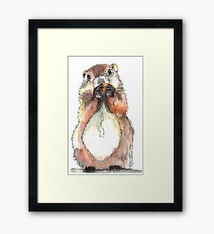 Dinky the Groundhog Framed Print