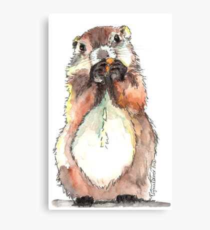 Dinky the Groundhog Canvas Print