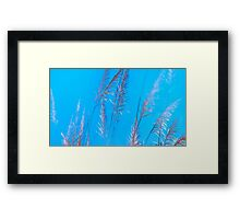 wildgrass Framed Print