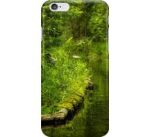 Green Peaceful Land - Nature Photography iPhone Case/Skin