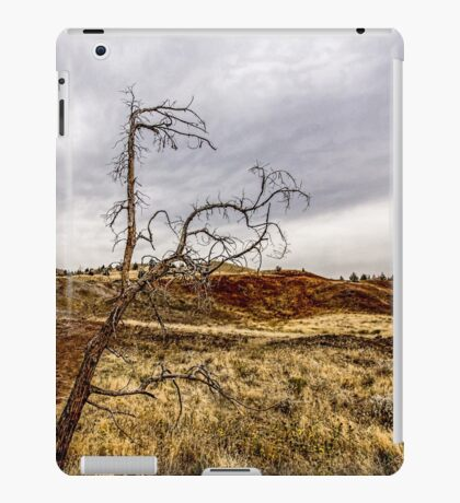 117Painted Hills iPad Case/Skin