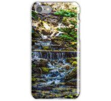118Three Creeks Lake iPhone Case/Skin