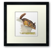 Fat Chipmunk Framed Print