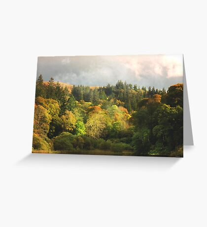 The Peaceful. Greeting Card