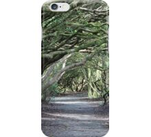 Traveling Through The Magical Wood iPhone Case/Skin