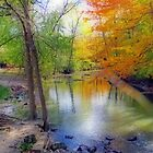 Autumn At Petrifying Springs by kkphoto1