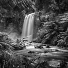 Hopetoun Falls  by Christine Wilson