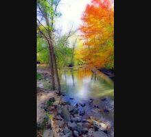 Autumn At Petrifying Springs Unisex T-Shirt