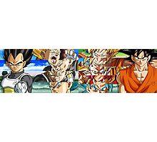 Goku and Vegeta Photographic Print