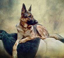 Man's Best Friend by vigor