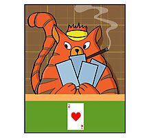 Cat Poker Photographic Print