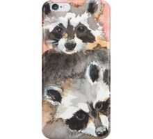 Two Coons iPhone Case/Skin
