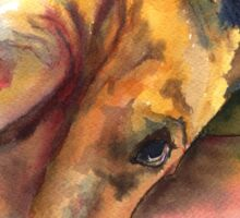 Killian, French Mastiff extraordinaire Sticker