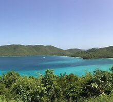 Overlooking Cruz Bay, St John, Virgin Island by kjrvmsi