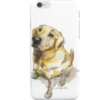 Golden Lab iPhone Case/Skin