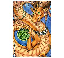 Oriental Dragon  Photographic Print